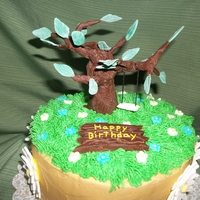 Free Spirit This is a birthday cake with a sculpted tree and tree swing from it. It has daisies around the outside, cake made with buttercream, tootsie...