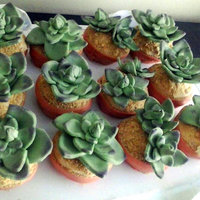 Succulent Cupcakes For A Bridal Shower Devils Food With Peanut Butter Frosting And Mmf Succulents And Pots Succulent cupcakes for a bridal shower! Devil's food with peanut butter frosting and MMF succulents and pots..