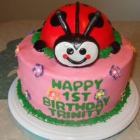 Ladybug Themed Cake This was a 10inch round with a half ball pan to make the ladybug :-)