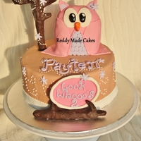 Girly Owl Themed Cake