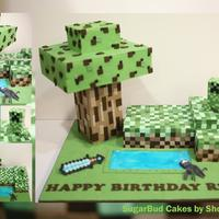 Minecraft   A Minecraft cake for my son, with over 1,000 hand cut squares!