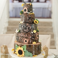 My Daughter's Wedding Cake Tree trunk; tree bark; sunflowers. Rustic. Country. Barn wedding. I wrote to CC to see what's wrong: I cannot enter a single word to...