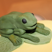 Fondant Froggy Hand Made For My Mother In Law Who Loves Frogs Fondant Froggy hand made for my mother in law who LOVES frogs