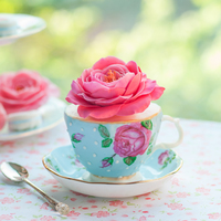 Teacup Cake And Sugar Roses Teacup Cake and Sugar Roses
