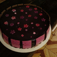 Pink Cake with transfer ganache and fondant