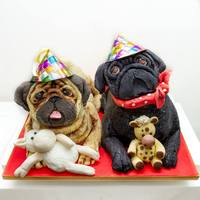 Pug Cake! *This cake I made was for a actual pugs birthday, the fawn pug is called Boo and the black pug Onyx!