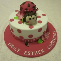 Lady Bug Naming Day Cake Lady Bug - Naming Day Cake