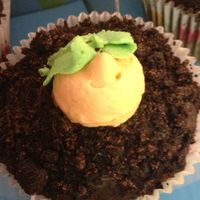 Carrot Cupcakeschoc Ganache With Oreos For Dirtcarrots And Leaves Are Buttercream   Carrot Cupcakes...choc ganache with oreos for dirt...carrots and leaves are buttercream