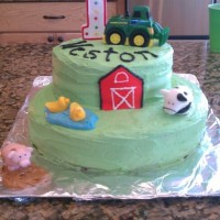Farm Animals Birthday   This was my second cake I made...I made the farm animals out of fondant