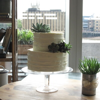 Rustic Buttercream Cake Decorated With Succulents   Rustic buttercream cake decorated with succulents