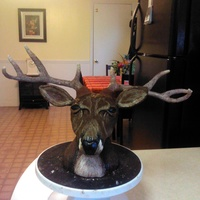 My Deer Head Made With Rkt And Modeling Chocolate My deer head. Made with RKT and modeling chocolate.