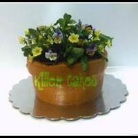 "Mothers Day Flower Pot Cake Cake Is Orange Creamsicle Yum Iced Completly In Buttercream With Oreo Dirt And Fresh Edible Flowers Thanks  Mothers Day Flower Pot Cake. Cake is Orange Creamsicle, YUM! Iced completly in buttercream with oreo ""dirt"" and fresh edible..."