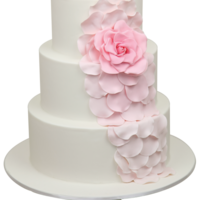 Cascading Rose Wedding Cake This is a stunning tutorial we have on offer. We designed it in pure white back in 2009, and now added the ombre pink. Learn it with us.