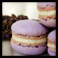 French Macarons, Lavender White Chocolate Infused Ganache