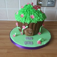 Themed Cakes House cake. Damaged board though :/