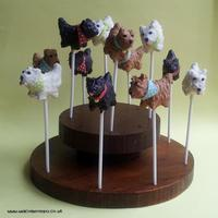 Dog Cakepops Dog Cake pops for a Dog Show last year (September 2012)