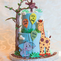 Jungle Babies Cake I made this cake to welcome my beautiful little nephew to the world. I had so much fun making this. Buttercream iced with gumpaste 2D...