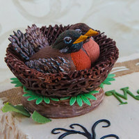 Birds Nest With Robins Made this for a bridal shower cake topper. 50/50 modeling chocolate and gumpaste. Bride to be was brought to tears when she saw them.