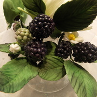 First Attempt At Gumpaste Blackberries Blackberries in various stages of ripeness, including blossoms, buds and leaves.