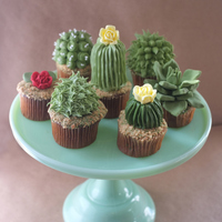 House Plant Cupcakes Succulent Cupcakes by Alana Jones-Mann; for more photos visit alanajonesmann.com