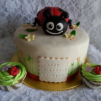 Lady Bug Themed Cake And Cupcakes For A 1St Birthday Celebration