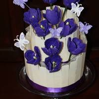 Tulip Cake White chocolate shards, gumpaste Tulips, royal icing butterflies, ribbon
