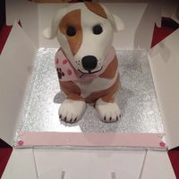 Jack Russell Cake Jack Russell Cake