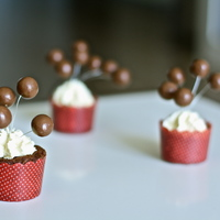 Malteser Cupcakes Malteser Balls Are Supported By Wire Malteser Cupcakes - Malteser balls are supported by wire.