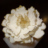 My First Fantasy Gumpaste Open Peony Still Need Some Practice And The Proper Veiner For It   My first (fantasy) gumpaste open peony. Still need some practice and the proper veiner for it.