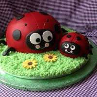 Ladybird Cake I Did For My 1Year Old Daughter Ladybird Cake I did for my 1year old daughter