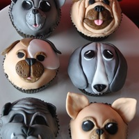 My First Time Making Covered Cupcakes The Two Girls Rely Love Dogs And There Mum Is Breading Chihuahuas So I Just Had To Try Making Dog Cup... My first time making covered cupcakes. the two girls rely love dogs and there mum is breading Chihuahuas so I just had to try making dog...