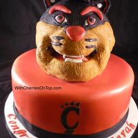 "Uc Bearcats Grooms Cake Bottom is a 10"" round, head is made using a ball pan, covered in ganache then covered in modeling chocolate with RKT for mouth and..."