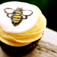 Honeybee Stout Cupcakes These are a dark chocolate stout cupcake with a honey buttercream and a hand painted bumblebee fondant topper. I used a local stout,...