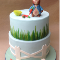 Peter Rabbit Cake Bottom tier is white chocolate mudcake with french raspberry butter cream, top tier is a dummy. Peter and his vegetables are made from a...