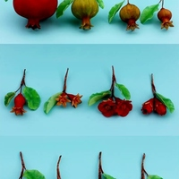 Sugarpaste Pomegranate Buds Flowers And Developing Fruits Sugarpaste Pomegranate buds, flowers, and developing fruits.