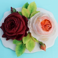 Sugar Paste Romeo And Juliet Roseolde Romeo And Sweet Juliet Rose Cultivar Sugar paste Romeo and Juliet rose(Olde Romeo and Sweet Juliet rose cultivar).
