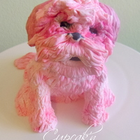 Shih Tzu Cake Topper Made Of Modeling Chocolate Inspired By The Birthday Girls Family Dog   Shih Tzu cake topper made of modeling chocolate inspired by the birthday girl's family dog.