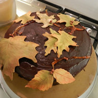 Shelly's Fall Cake (The Quick Cake Because Main Cake Was A Fail) spun sugar and leftover sugar-paste leaves because the main one I made was just So. Damn. Ugly.
