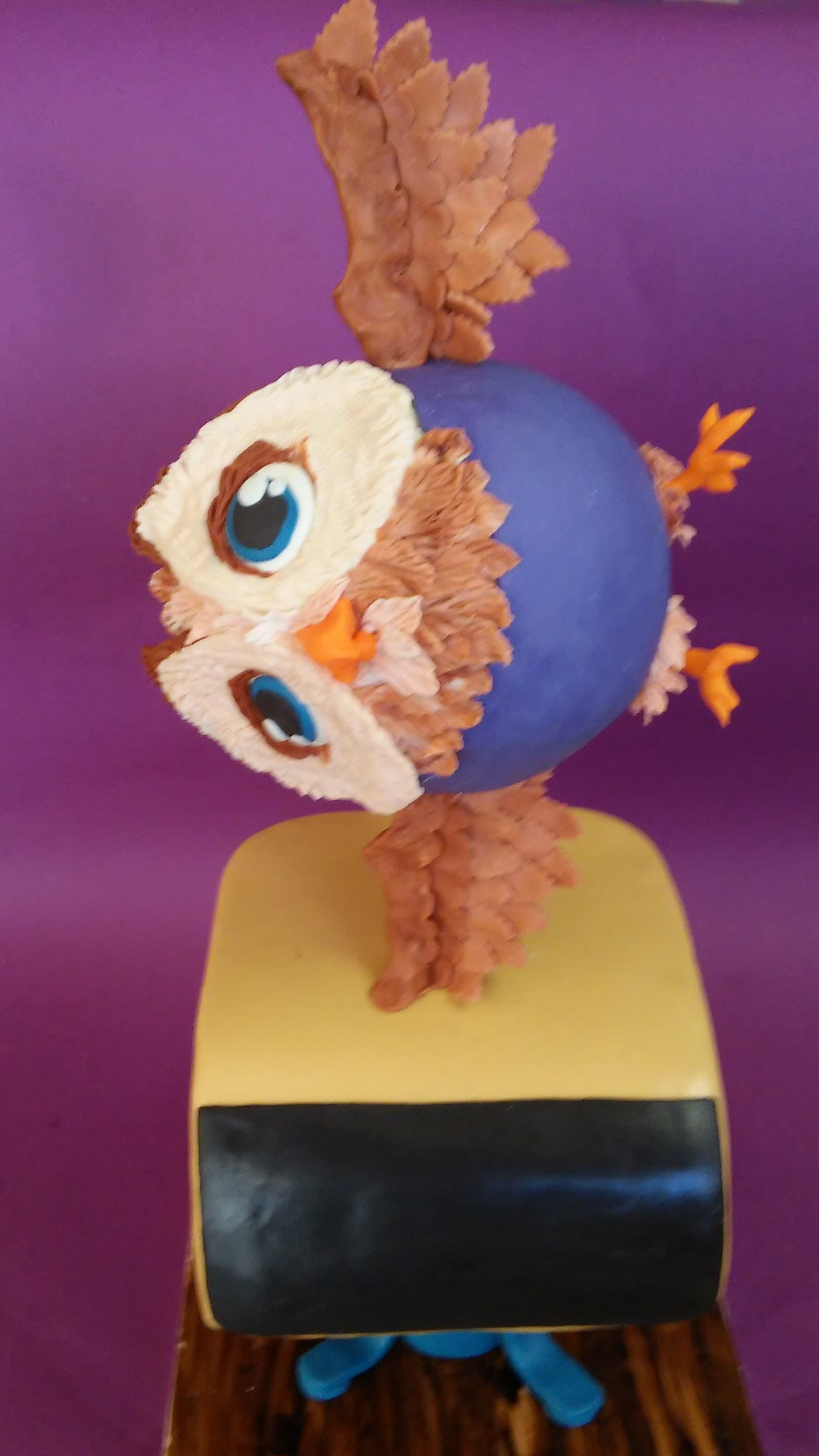 Gymnastic Owl This is my first gravity defying cake. The birthday girl wanted an owl leaping on a gymnast vault. So here it is! The owl is cake and rkt,...