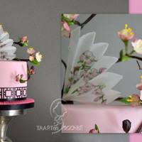 Cake With Blossom And Fan Pink cake with frosty lace (paper punch), wafer paper fan (hand painted) and some blossom.