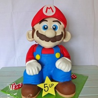 Super Mario 3D The head is styrofoam covered with fondant. The body is chocolate cake with chocolate ganache filling.