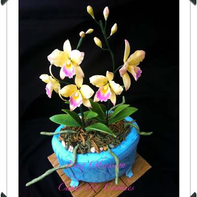 Cattleya Orchid Cake