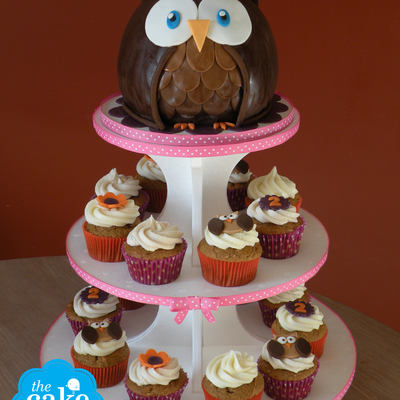 """mommy"" Owl Cake With ""baby"" Owl Cupcakes"