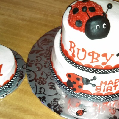 Lady Bug Cake With Smash For 1St Birthday Mom Found Photo And We Used Close To The Same Design Successful Ribbon Adding At Bottom