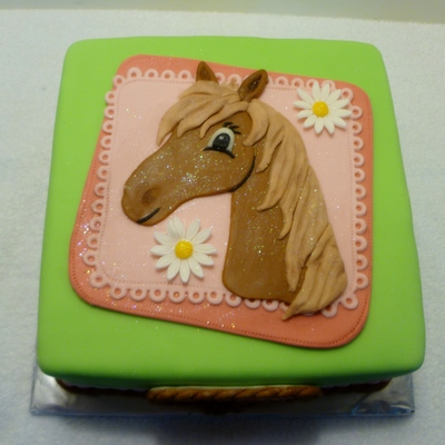 A Birthday Cake For My Friends 10 Year Old Granddaughter Who Loves Horses