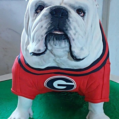 Georgia Bulldog Grooms Cake 7Th Time Ive Made Him And He Just Keeps Getting More Realistic Each Time