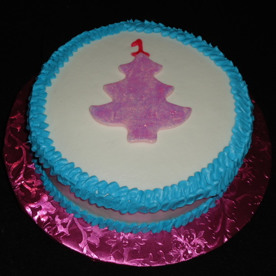 Winter Wonederland Smash Cake