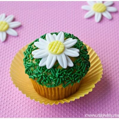 Simple Daisy Cupcakes