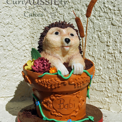 3D Hedgehg In A Flower Pot Cake