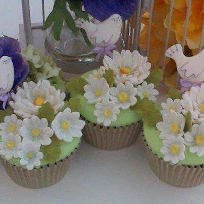 Daisy And Dove Charity Cakes
